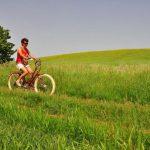 Urlaub bei YLVIE_ Rad fahren im Weinviertel