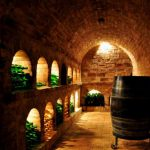 Urlaub bei YLVIE_ Weinkeller in Hadres_ laengste Kellergasse der Welt